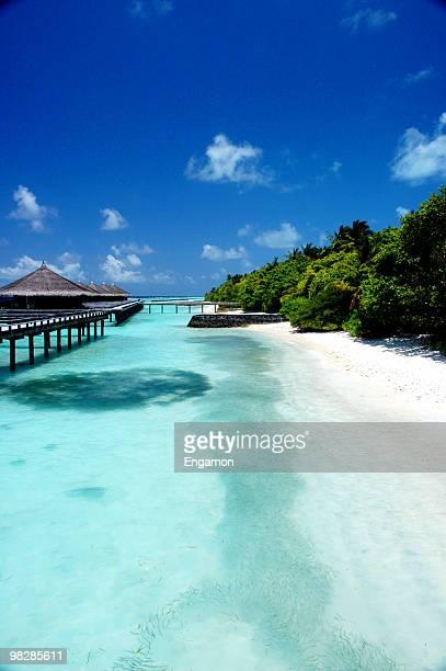 bungalows sur pilotis dans un paradis tropical