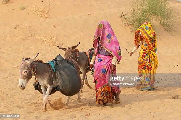 Water carrier of Thar Desert.