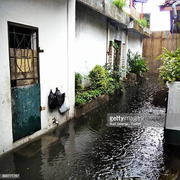 Water Collected Outside House During Monsoon
