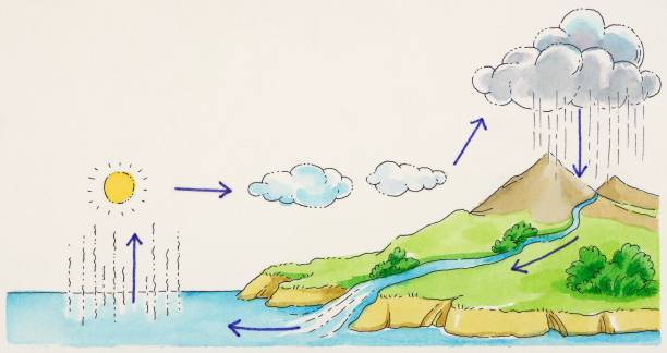 Water cycle diagram drawing pictures getty images water cycle diagram drawing ccuart Image collections