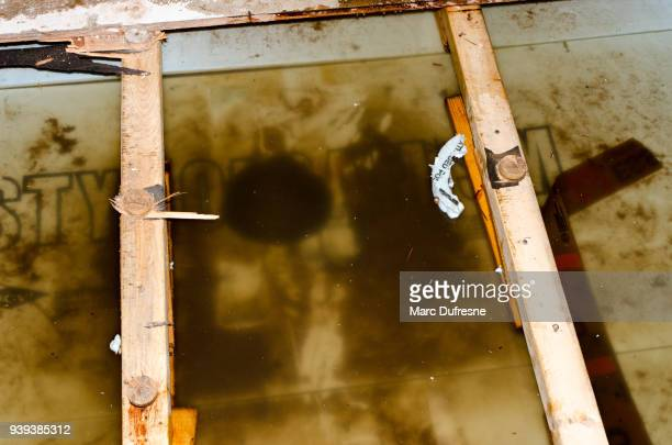 water damage in basement caused by sewer backflow due to clogged sanitary drain - flooded basement stock pictures, royalty-free photos & images