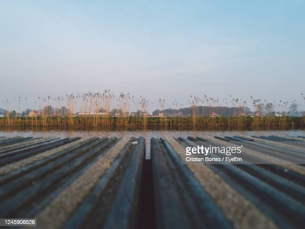 water. deck closeup - bortes stock pictures, royalty-free photos & images