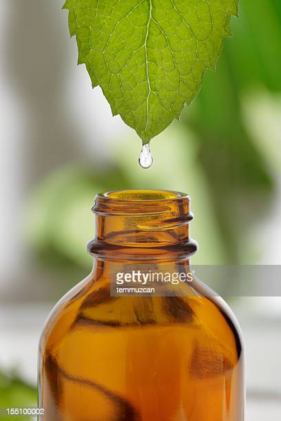 Water dripping from leaf into brown, glass bottle