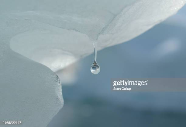 Water drips from ice in the Ilulissat Icefjord during unseasonably warm weather on July 30 2019 near Ilulissat Greenland The Sahara heat wave that...