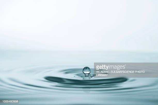 water drop impact - 水面 ストックフォトと画像