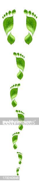 Water drop on green footprint
