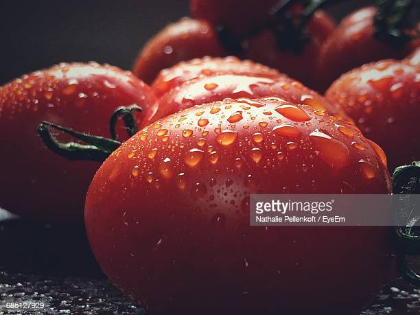 Water Drop On Tomatoes