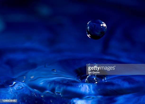 water droplet - ian gwinn stock photos and pictures