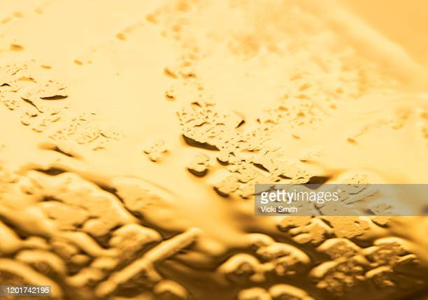 water droplets on the car windscreen at sunset - world water day stock pictures, royalty-free photos & images