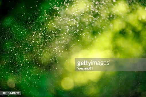 Water Drops Of Lawn Sprinkler Stock Photo Getty Images