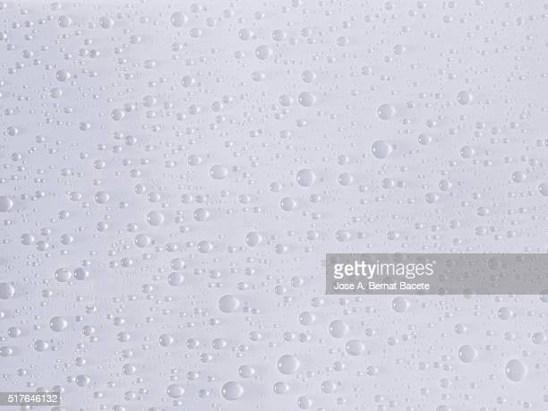 Water drops on a glass sheet with white bottom