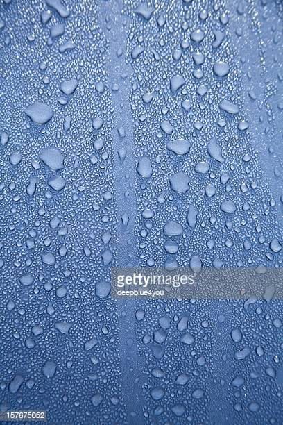 Water drops on a polished blue motorhood
