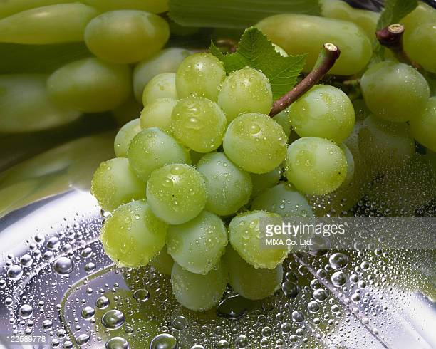 water drops on muscat grapes - muscat governorate stock pictures, royalty-free photos & images