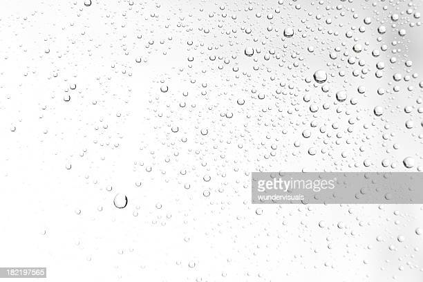 water drops on white - drop stock photos and pictures