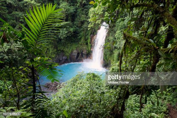 water fall at the rio celeste, tenorio national park, guanacaste, costa rica, central america - guanacaste stock pictures, royalty-free photos & images