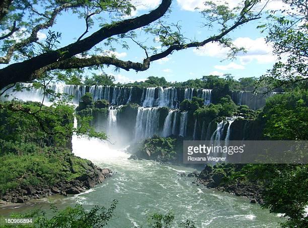 Water fall Iguazu Argentina