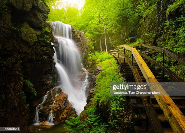 water falls in the flume - new hampshire stock pictures, royalty-free photos & images