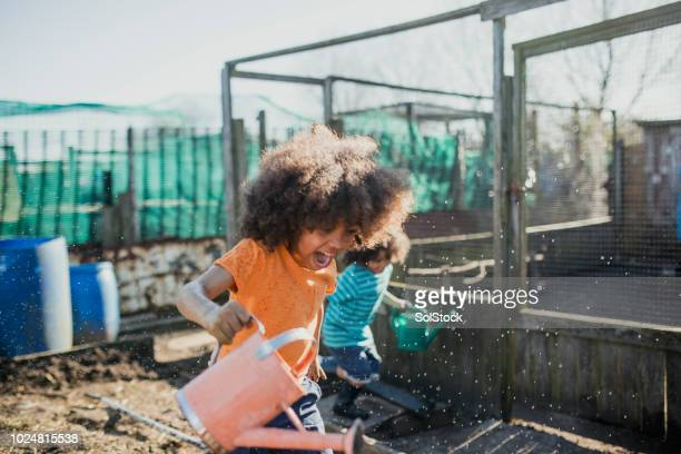 water fight at the allotment - purity stock pictures, royalty-free photos & images