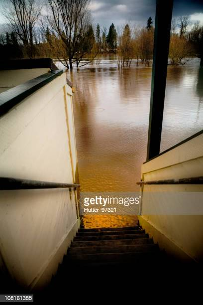 water flooding in park - willamette river stock photos and pictures