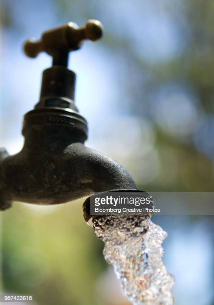 Water flows from a garden tap