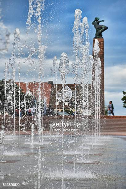 Water fountain in Market square Freudenstadt