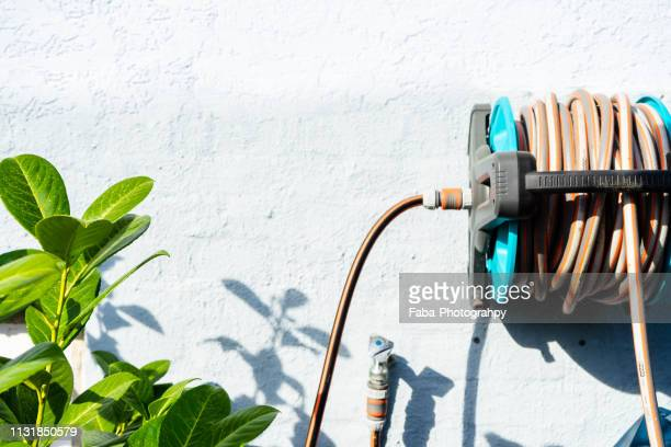 water hose - hausgarten stock pictures, royalty-free photos & images