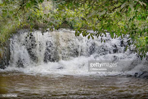 water is life. - crmacedonio stock photos and pictures