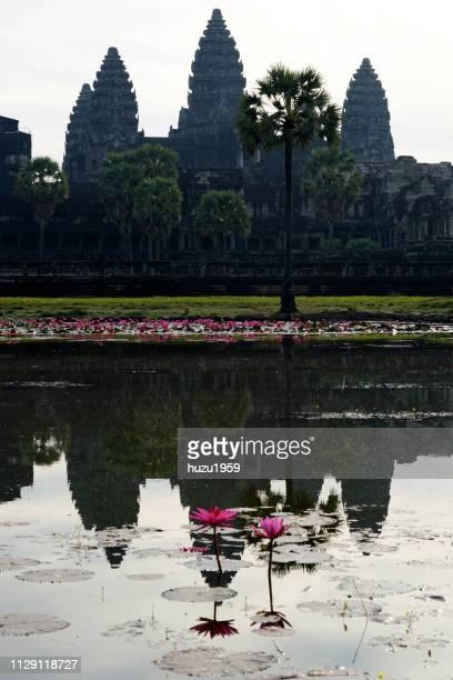Water lily and Angkor Wat