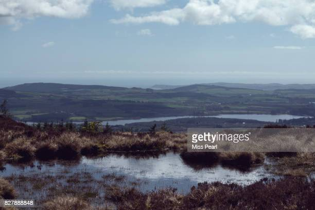 A water logged pool in bog land over a lake
