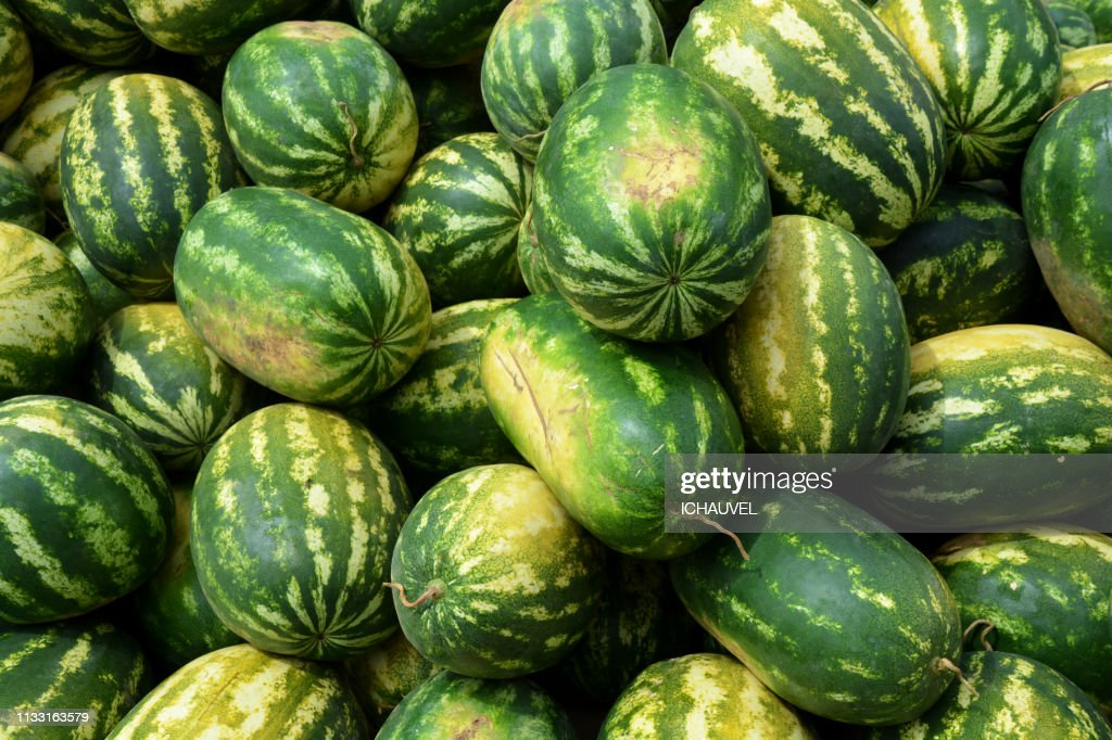 Water melons Bolivia : Stock Photo