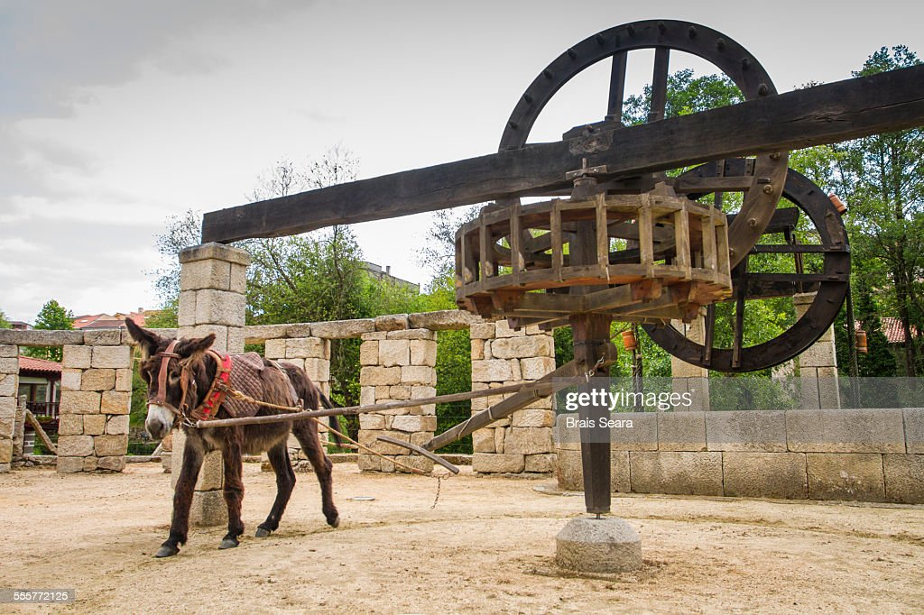 Water mill : Stock Photo