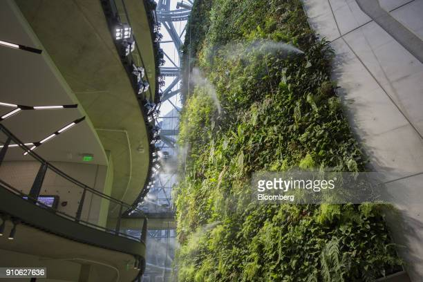 Water mists from a wall of plants inside the Amazoncom Inc Spheres in Seattle Washington US on Tuesday Jan 23 2018 The online retailer is scheduled...