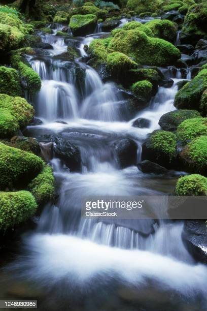 Water Moving Over Mossy Rocks Cascades Waterfall Olympic National Park Wa USA