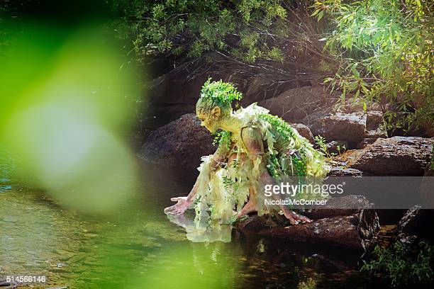 water nymph gently touching a woods stream - pixie stock photos and pictures
