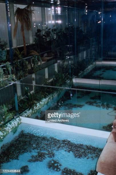 Water oasis at Adnan Khashoggi's office at Olympic Tower in New York USA 1986