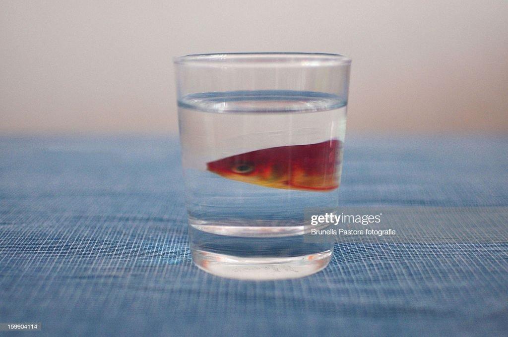 Water : Foto stock