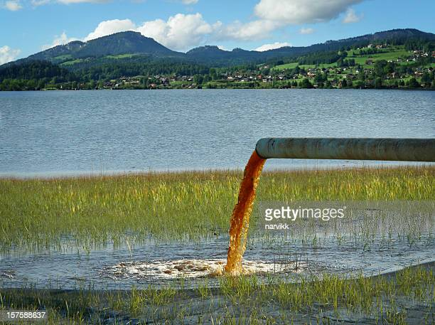 water pollution - toxin stock pictures, royalty-free photos & images