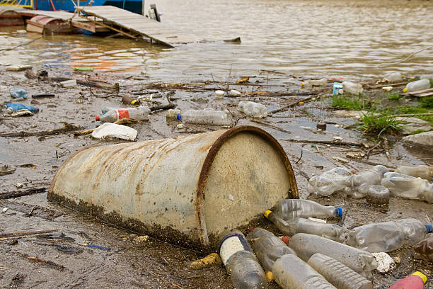 pollution one of the greatest problems in the world today