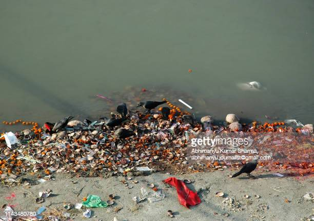 water pollution-01 - ganges river stock pictures, royalty-free photos & images
