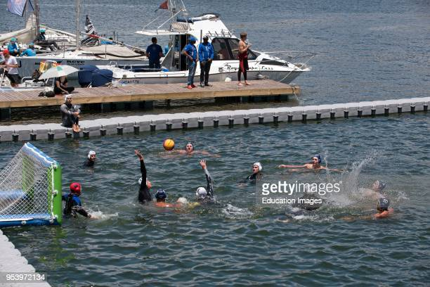 Water polo on Cape Town Harbour Western Cape South Africa
