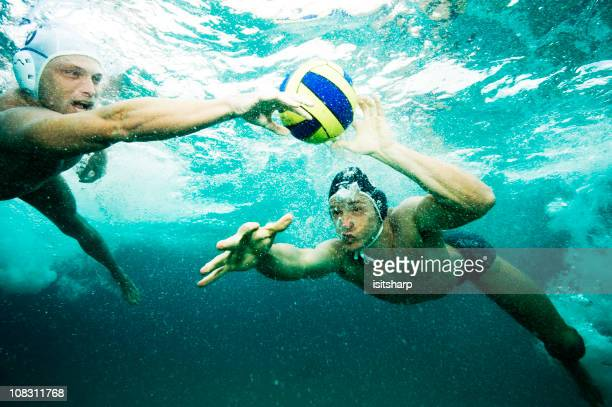 water polo - water polo stock pictures, royalty-free photos & images