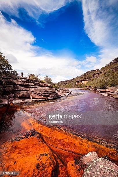 agua de estanque en un golden río, auyantepuy, venezuela - la gran sabana fotografías e imágenes de stock