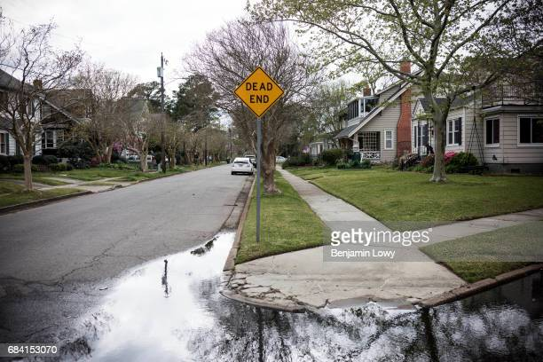 Water pools on a street in LarchmontEdgewater a Norfolk Va neighborhood frequently plagued by floods