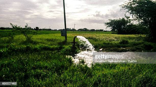 Water Pouring From Pipe In Farm