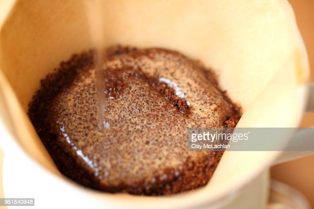Water pouring onto ground coffee in filter, Oakland, California, USA