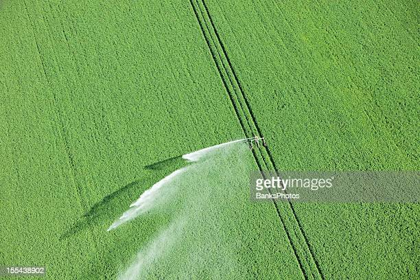 water reel irrigation system sprayer in farm field - sprinkler system stock pictures, royalty-free photos & images