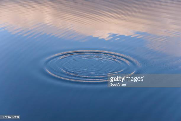 Ondulations aquatiques et Reflections