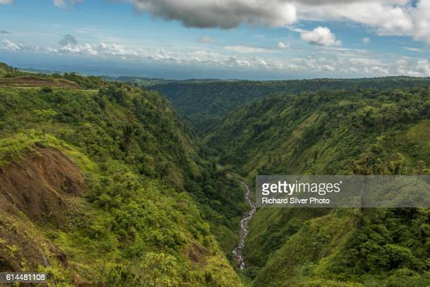 Water running through the greenery of San Jose Costa Rica