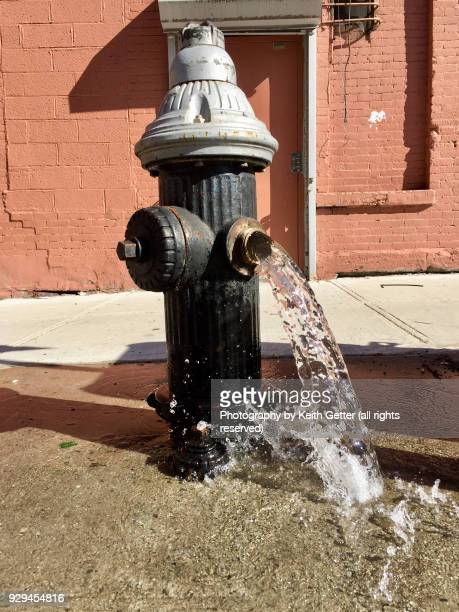 Water rushing out of a curbside fire hydrant onto a city street