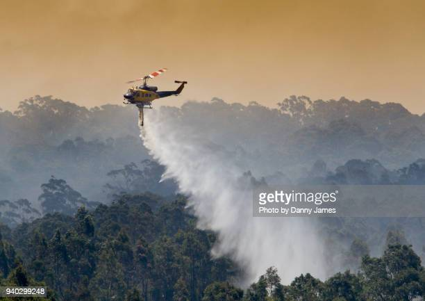 water saves the day - australian bushfire stock pictures, royalty-free photos & images